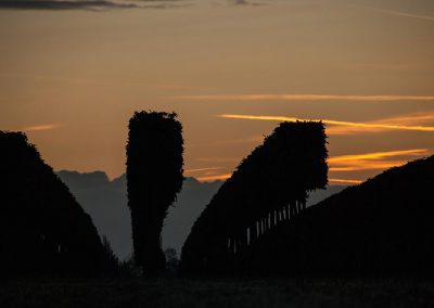 Sonnenuntergang-1BAER-0106